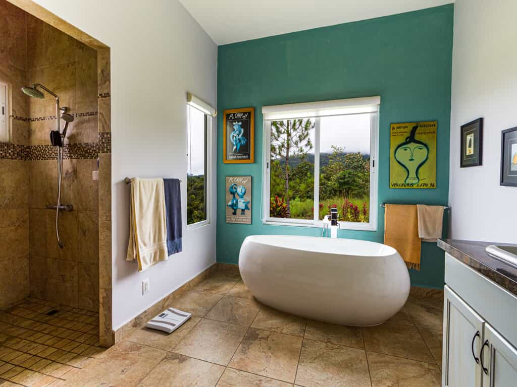 Bathroom with one teal wall.